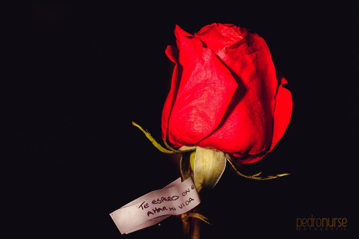 regalo novia rosa roja boda en caracas