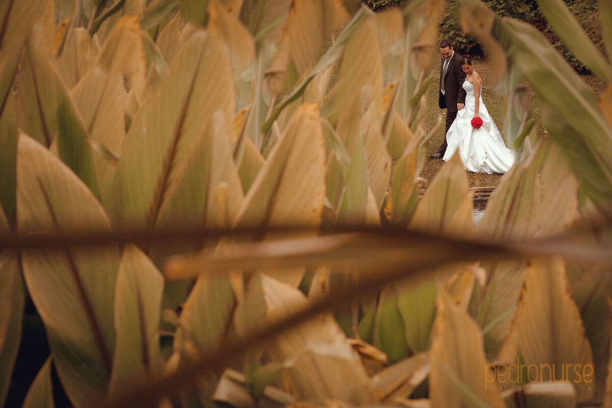 Fotos de novia novio caminando postboda en caracas